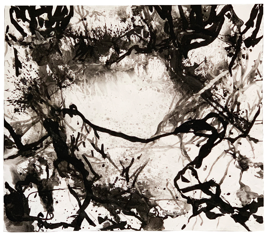 Untitled, from the series 'Pintura Salobra', 2018. China ink on paper 150 x 160 cm.