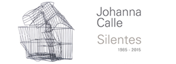 Johanna Calle - Silentes (1985 - 2015) -at Museu De Arte Do Banco Da Republica, Bogotá